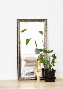 Estancia Mirror Ottsjö Grey-brown 40x80 cm
