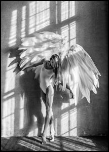 Lagervaror egen produktion Angel Women Posing II