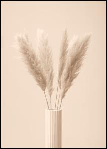 Bildverkstad Pampas Grass III Poster