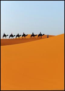Bildverkstad Caravan Poster