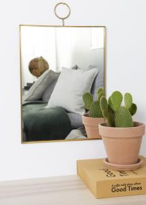 Society of Lifestyle Mirror House Doctor The Loop Brass 30x40 cm