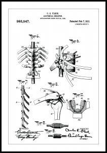 Bildverkstad Patent drawing - Anatomical Skeleton III Poster
