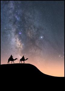 Bildverkstad Camels Under The Stars Poster