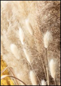 Bildverkstad Dried Bouquet Poster