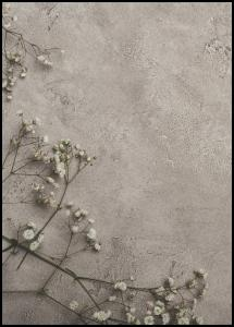 Bildverkstad Stone Flowers Poster