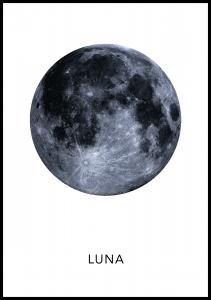 Bildverkstad Luna Poster